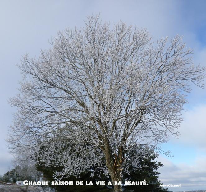 La beauté est toujours une source d'inspiration contagieuse...