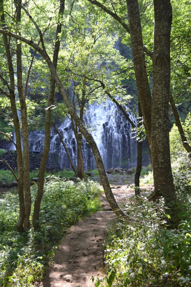 Promenade au frais par temps de canicule : la ballade des chutes de la Beaume